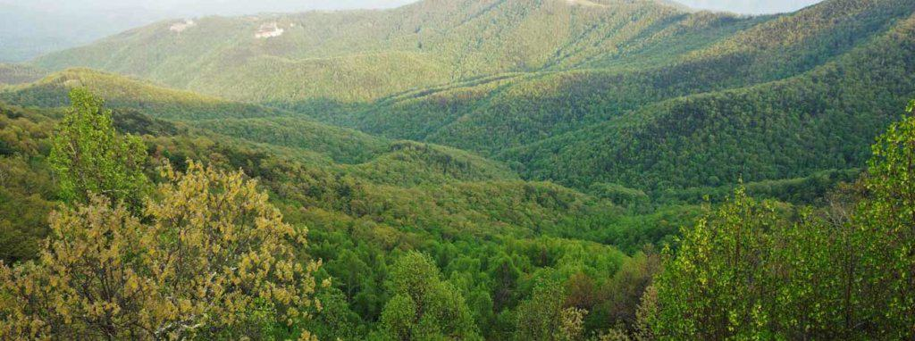 landscape_mountains_green_boone_nature
