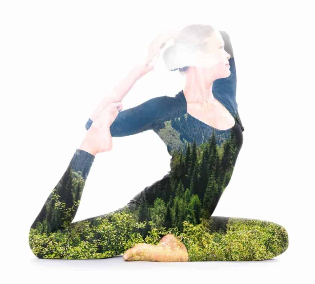Yoga and Ayurveda, the science of nature
