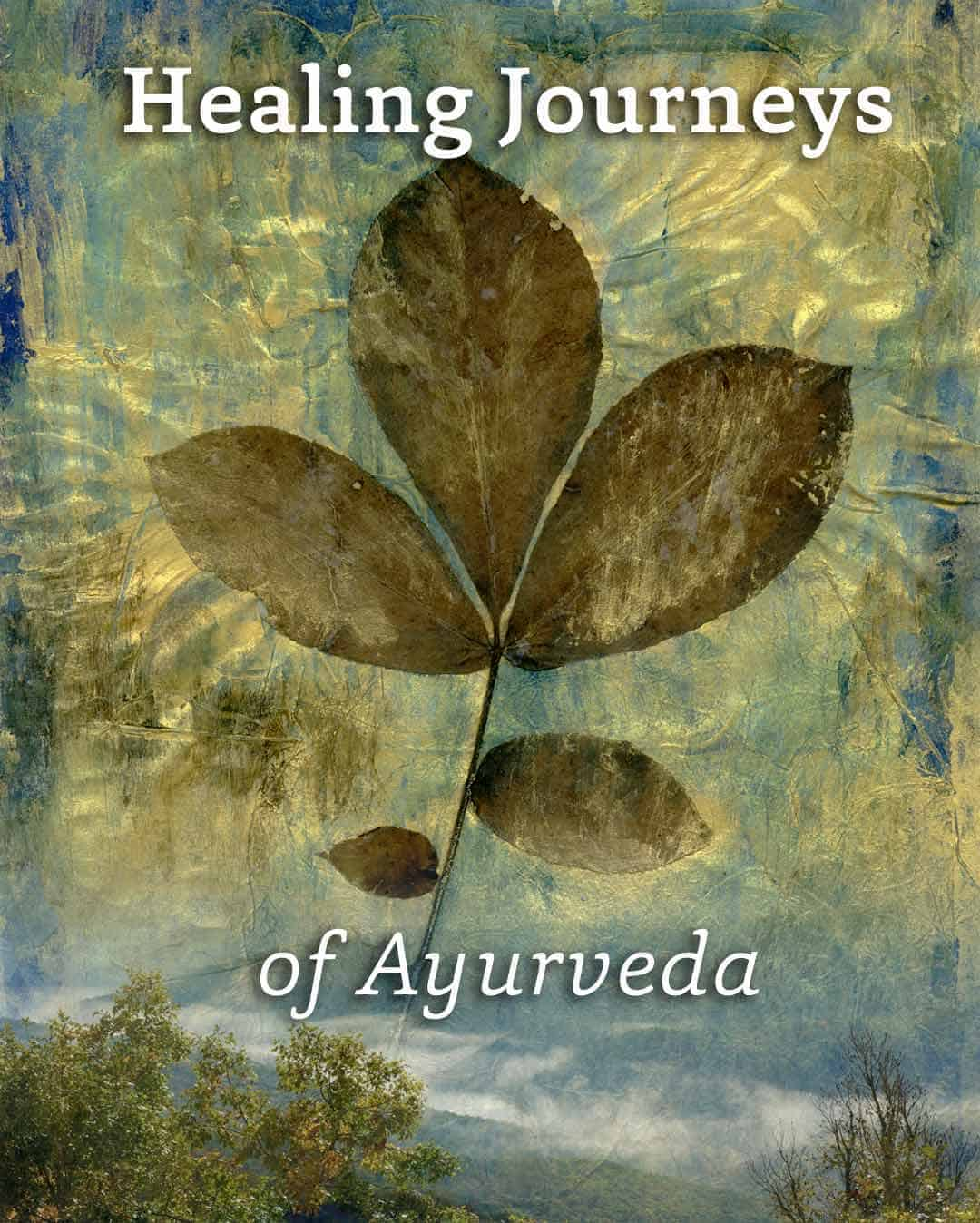 healing journeys ayurveda