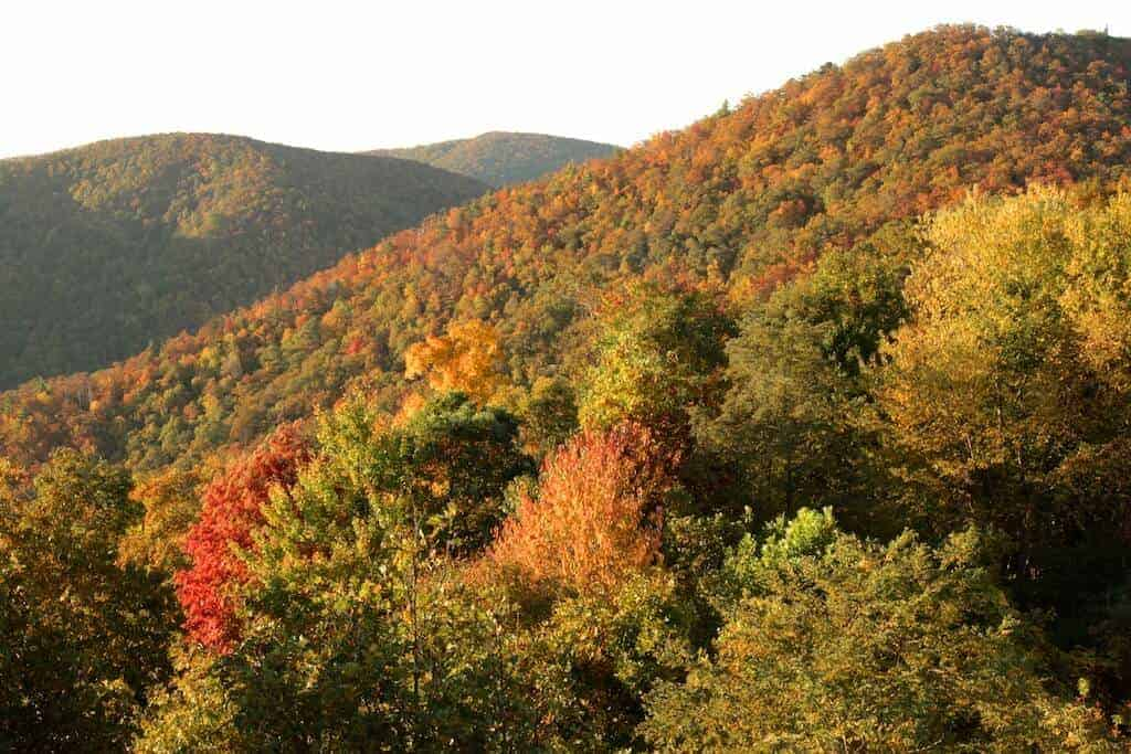 North Carolina Fall Colors in Boone