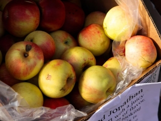 Late Fall Apples Boone Farmers Market