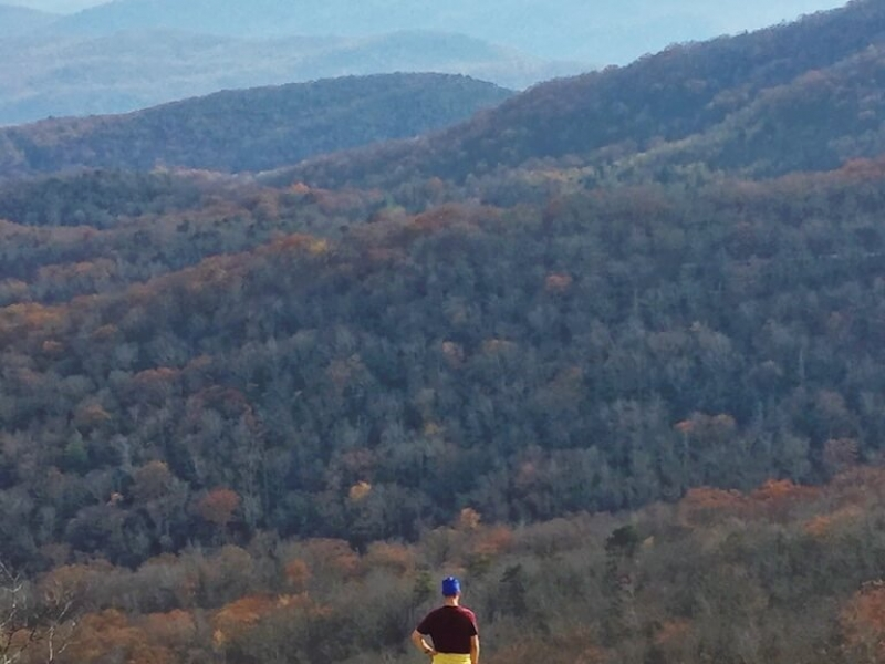 North Carolina Fall Colors near Beacon Heights