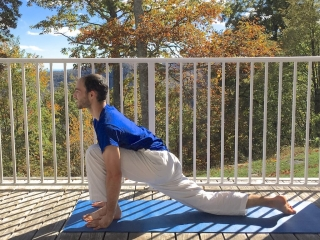 Fall Colors and Yoga