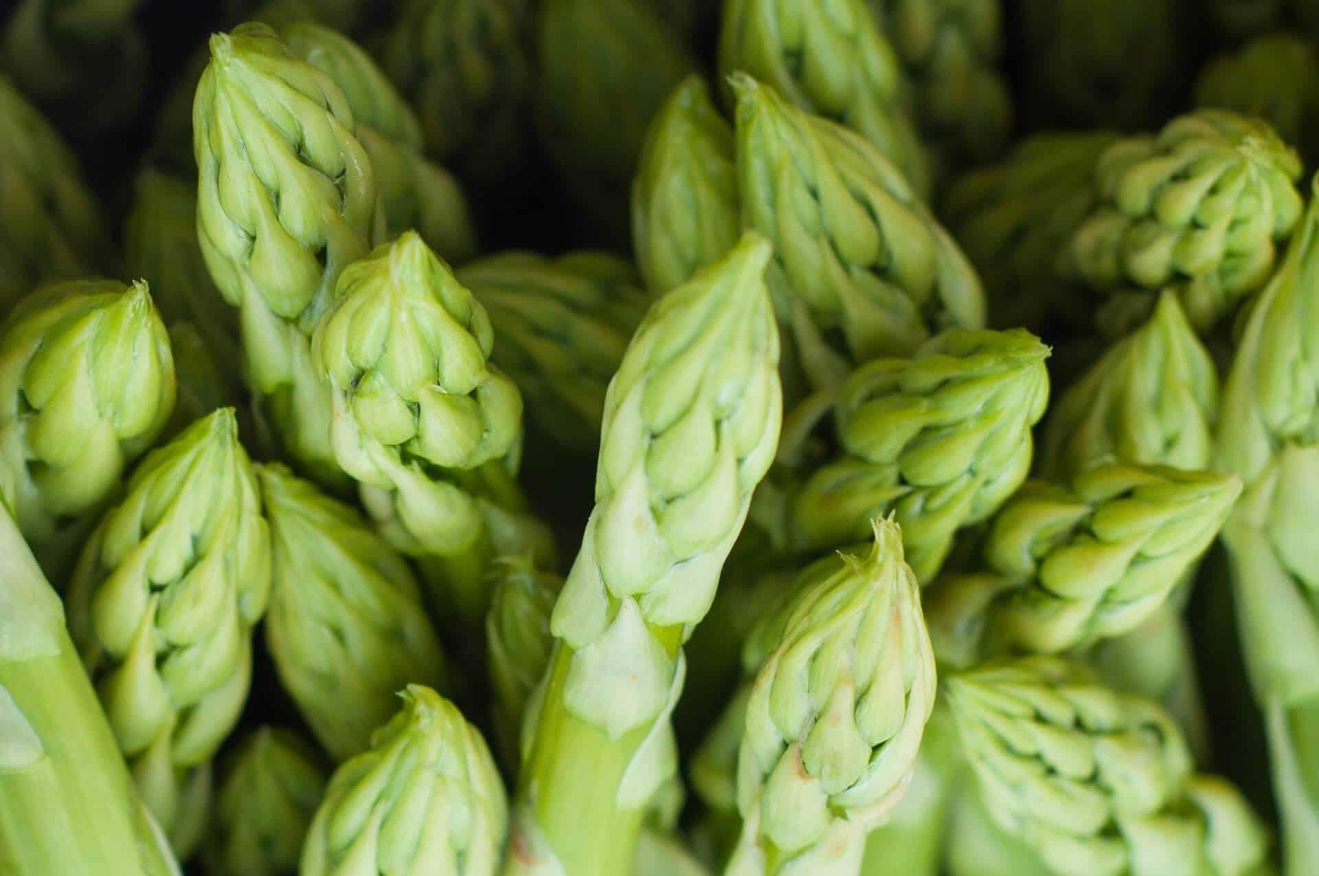 Asparagus - Ayurvedic Recipe