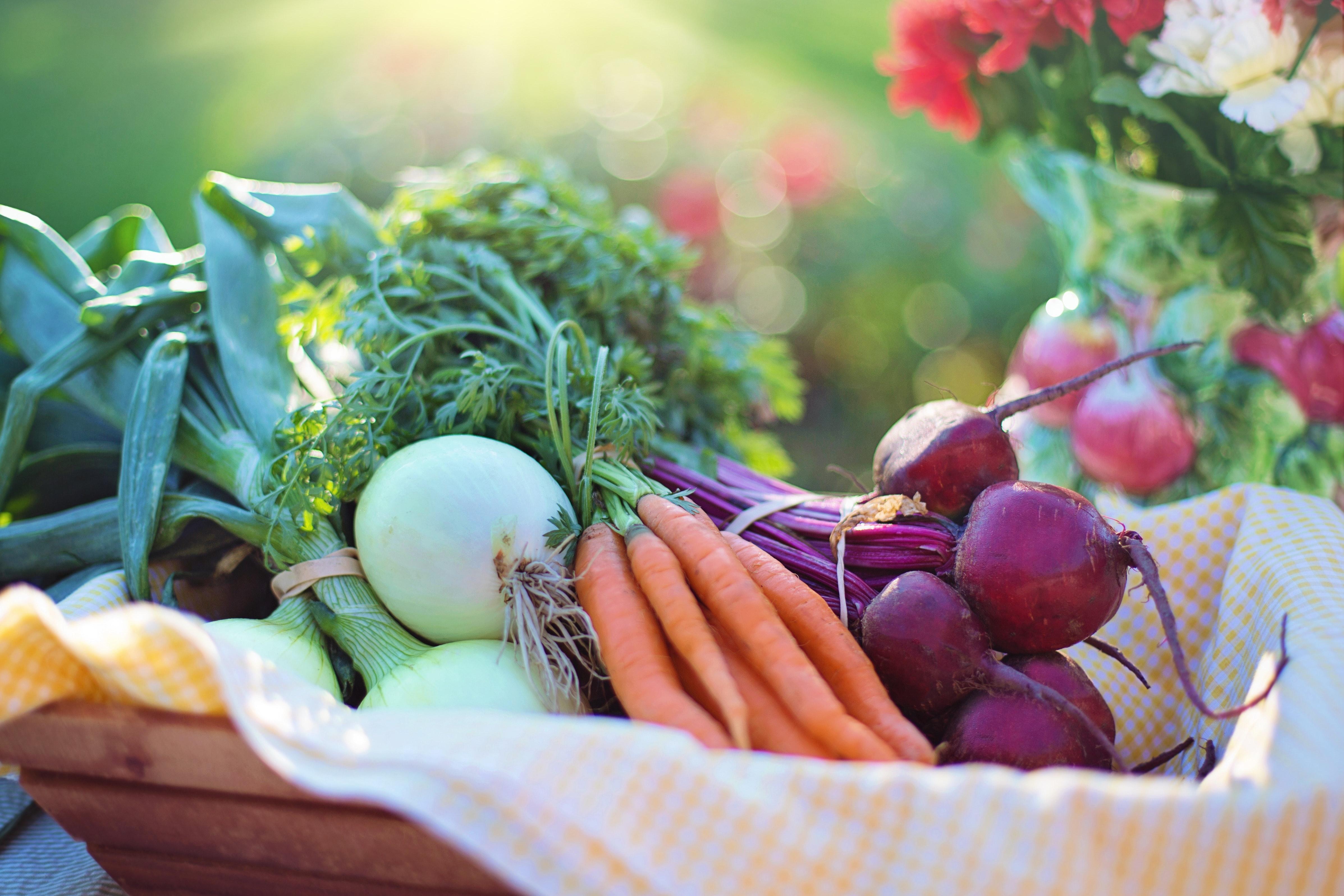 Agni Salad - the Art of Living Retreat Center