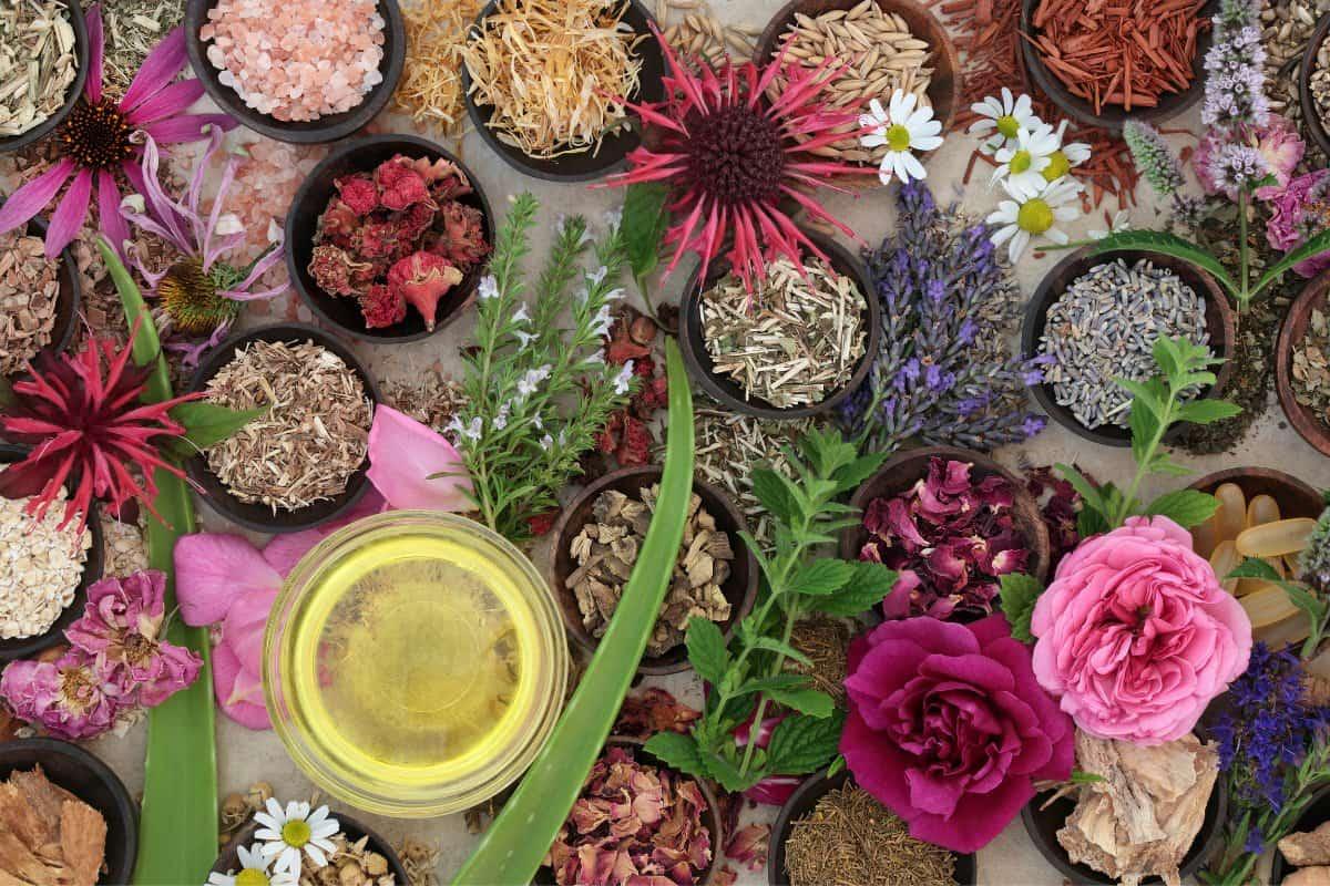 natural skincare herbs
