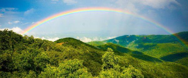 rainbow event image