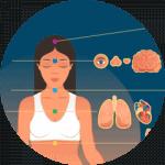 Pulse_diagnostic_organs